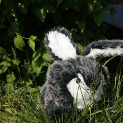 Peluche petit lapin